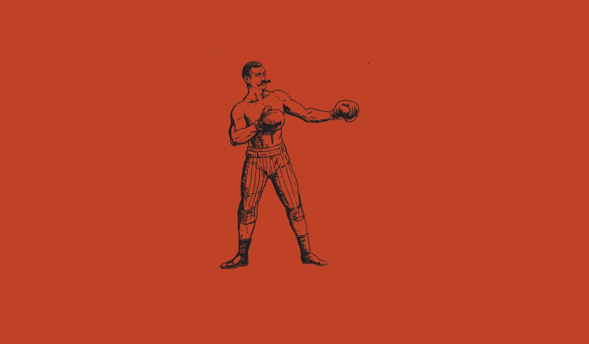 boxer-orange background